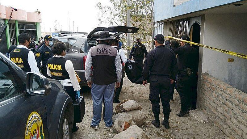 Dos perros pitbull matan a niños de seis años en Arequipa