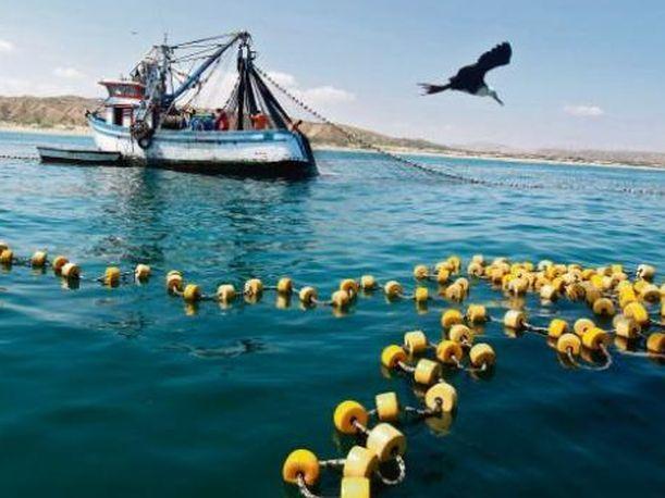 Anuncian decreto para difundir formalización de pesca artesanal