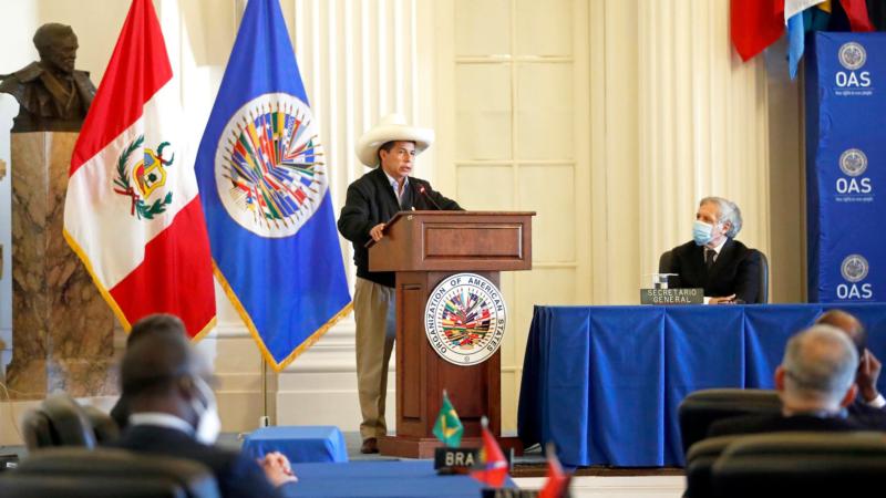 «Tenemos corruptos hasta para exportar», asegura Castillo en la OEA